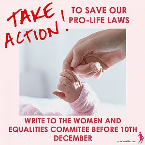 Women and Equalities Committee: 10 useful points to help you make your submission