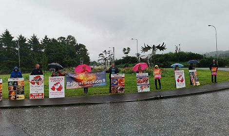 People of South Down brave rain to ask local representatives to Repeal Section 9