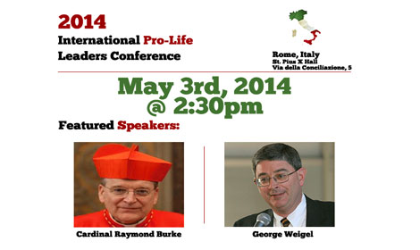 Director of Precious Life, Bernadette Smyth to attend Conference in Rome: hosted by LifeSiteNews